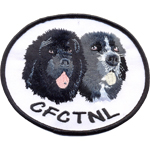 Patches CFCTNL