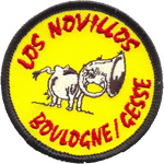 Patches novillos