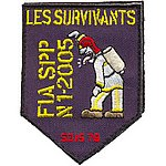 Patches les survivants