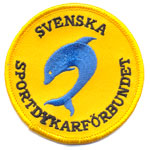 Patches svenska