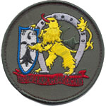 Patches Lion